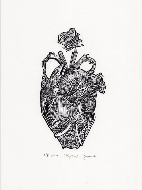 "Lino ""hjerte"" (A4)"