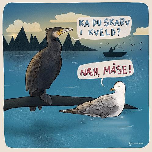 Skarven & Måsen