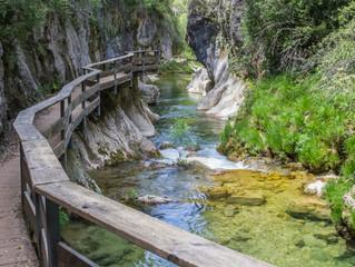 La Primavera llega a Ibipozo - OFERTAS ESPECIALES