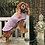 Thumbnail: Town & Country Dog Coats