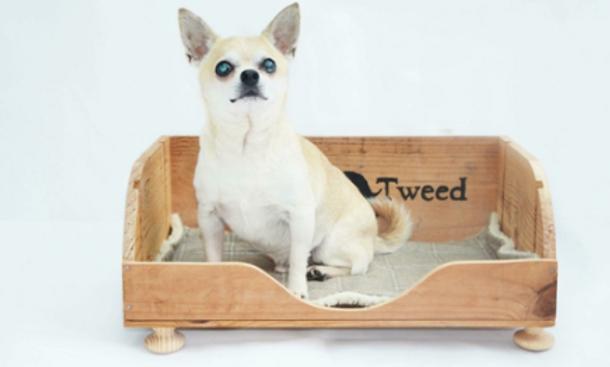 Vintage Wooden Crate Dog Bed