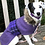 Thumbnail: Boutique Tweed Dog Coat