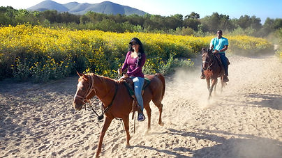 Two Hour Trail Ride Gift Certificate