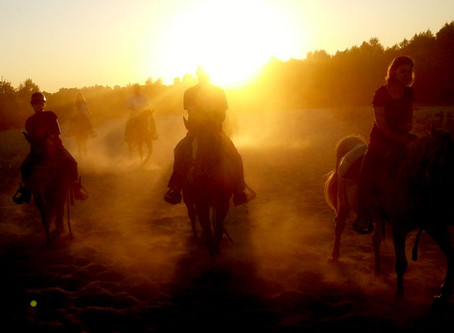 What makes S&D Horseback Riding different from other rent strings?