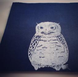 Owl ふくろう