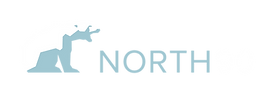 North90_hor_logo_light_RGB_300.png