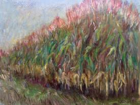 Wizzing by the fields