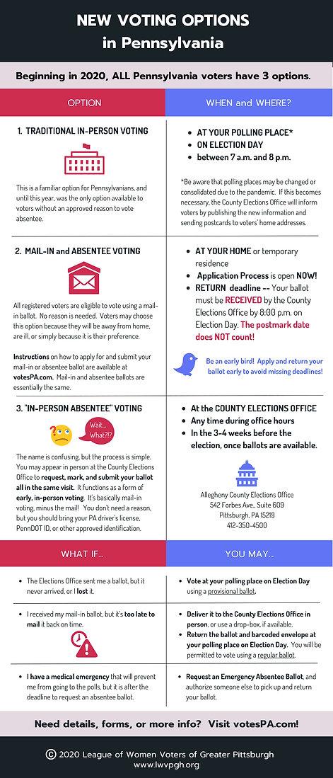 voting options.jpg