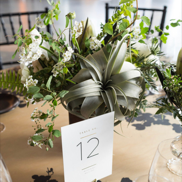 1Hotel wedding textural floral arrangement with spirea, jasmine, white blooms, and large xerographica air plant