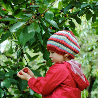 Cherry Farm Red Hill 3.jpg