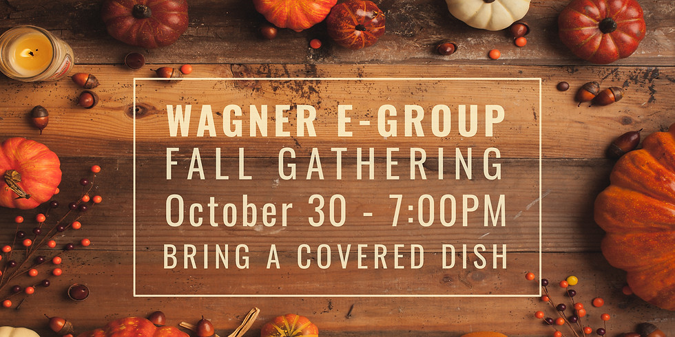 Wagner E-Group Fellowship