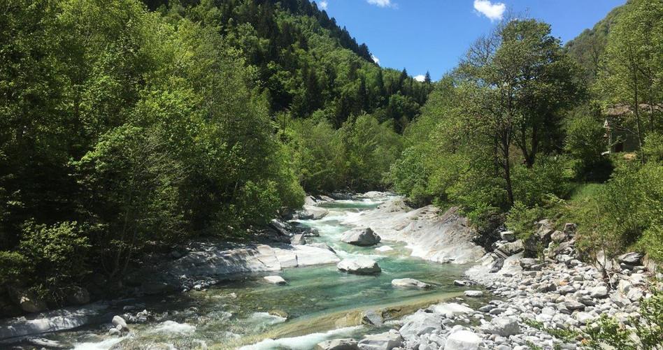Glasklares Wasser im Fluss Ribo