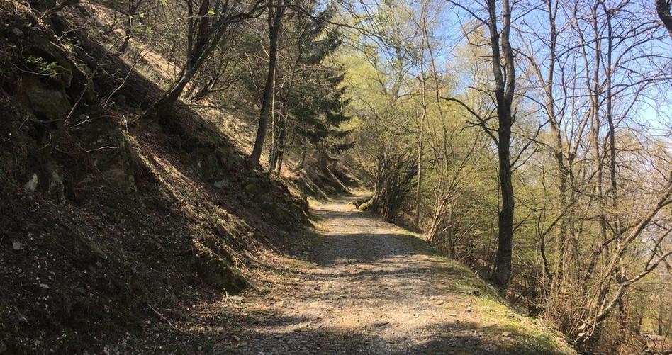 Naturweg zu Mt. di Medeglia