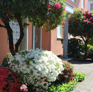 Frühlingsbild vom Eingang.