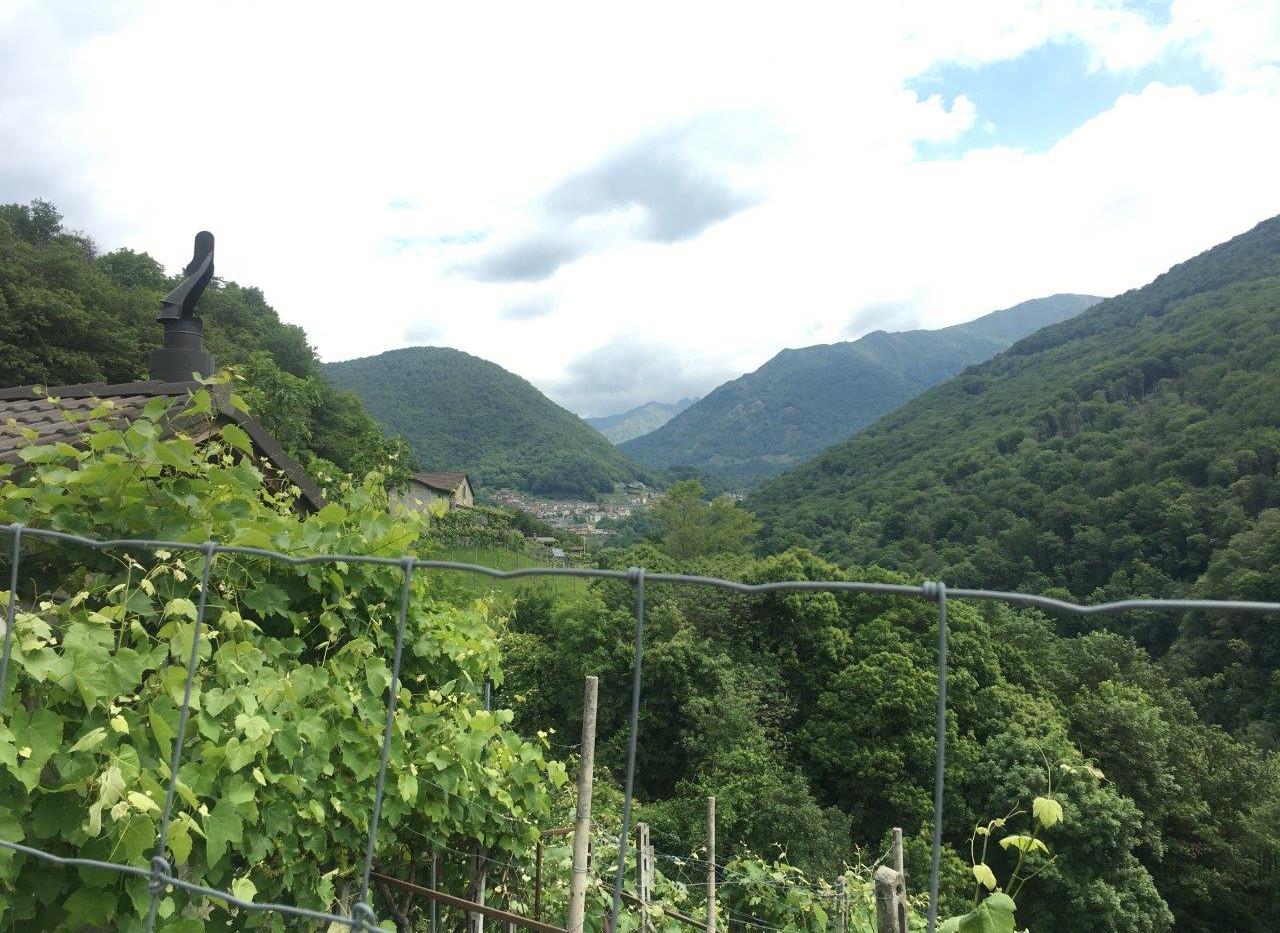 Blick Richtung Medeglia (vor Isone)