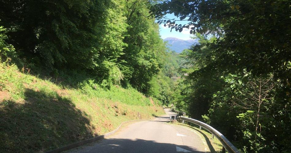 Weg Richtung Überbrückung A2
