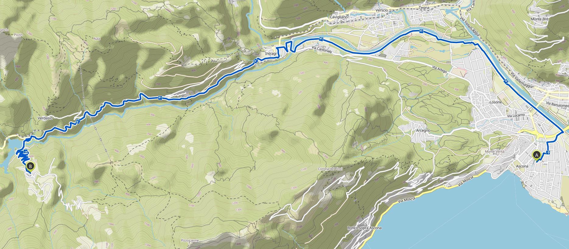 Kartenausschnitt-Palagnedra