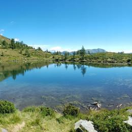 Alpe Salei