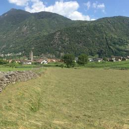 Ascona-Roveredo