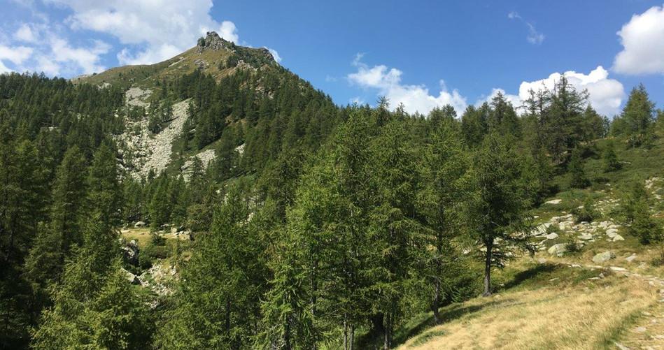 """Weg zum """"laghetto alpe salei"""""""