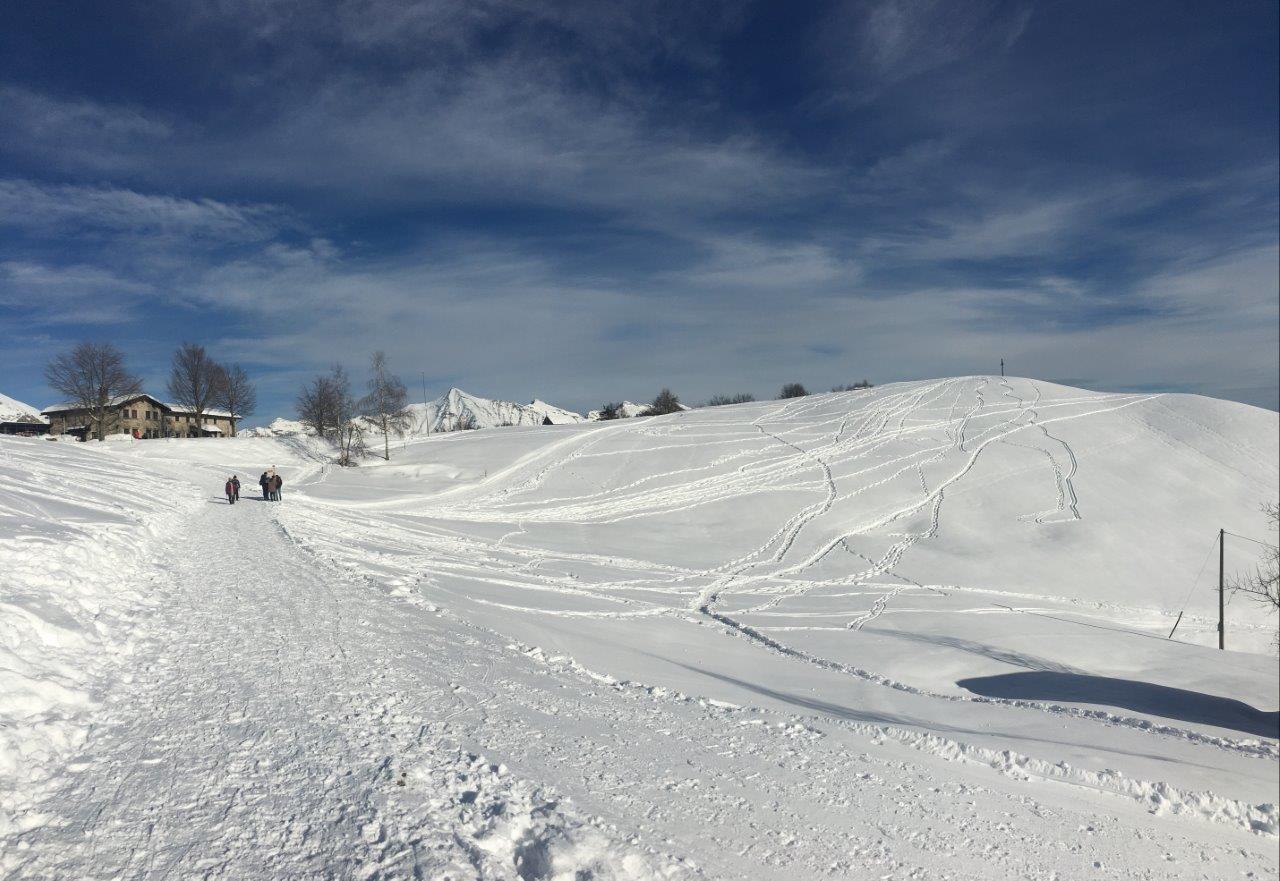 Alpe Cardada
