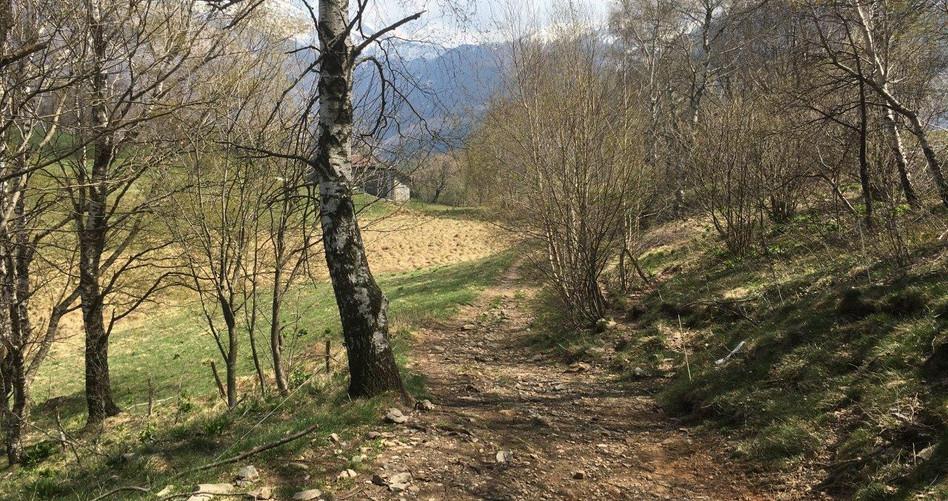 Trail nach Cima di Fuori