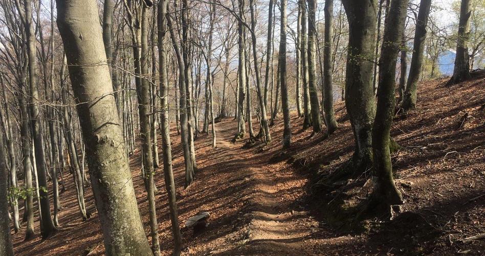 Trail nach Val Resa