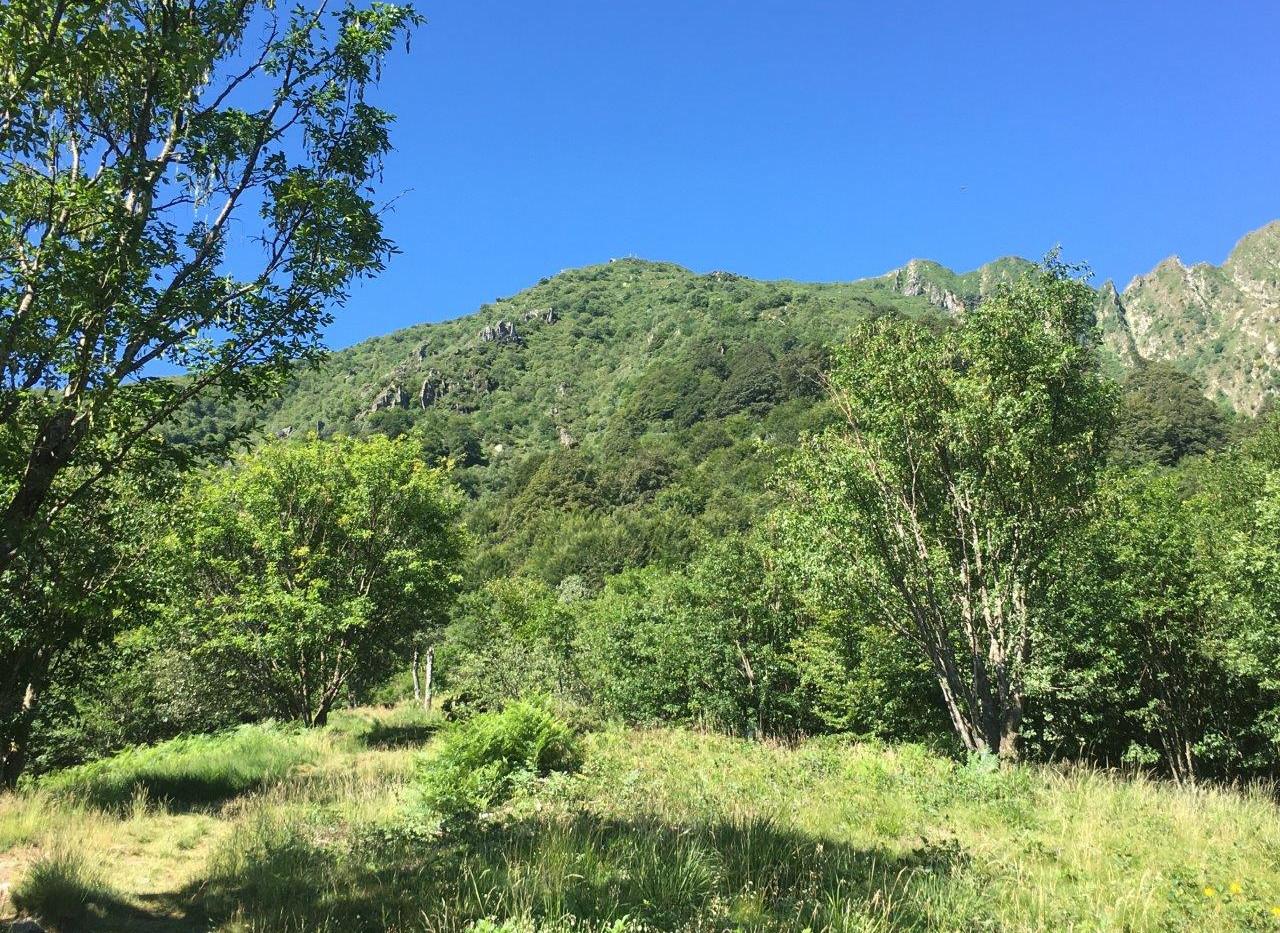 Ganz oben ist die Hütte sichtbar