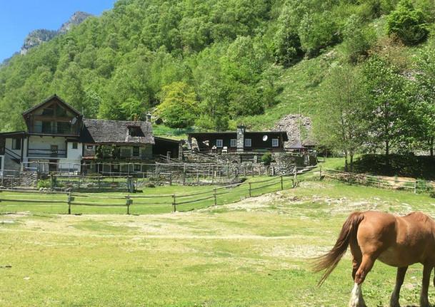 3.4 Ascona-Vergeletto