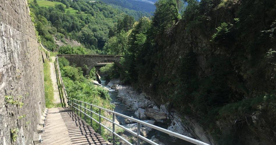 Trail mit gut fahrbaren Stufen
