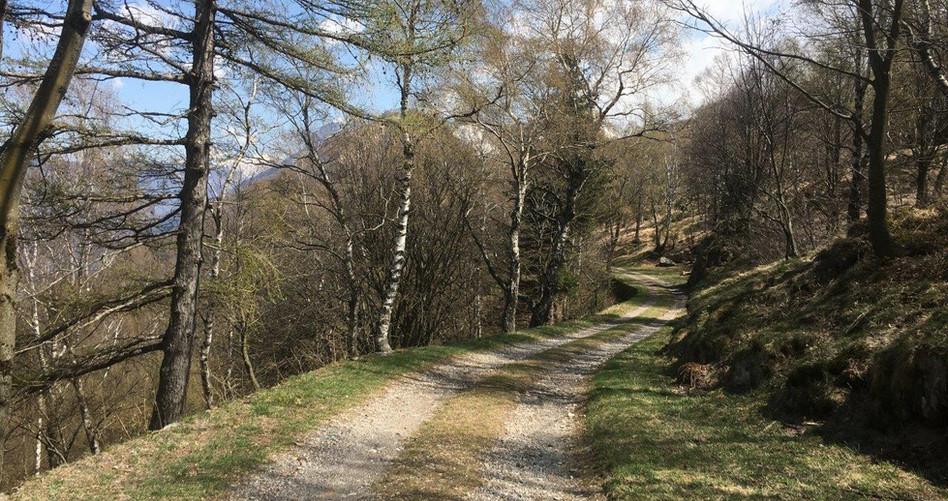 Weg Richtung Berg Mattro