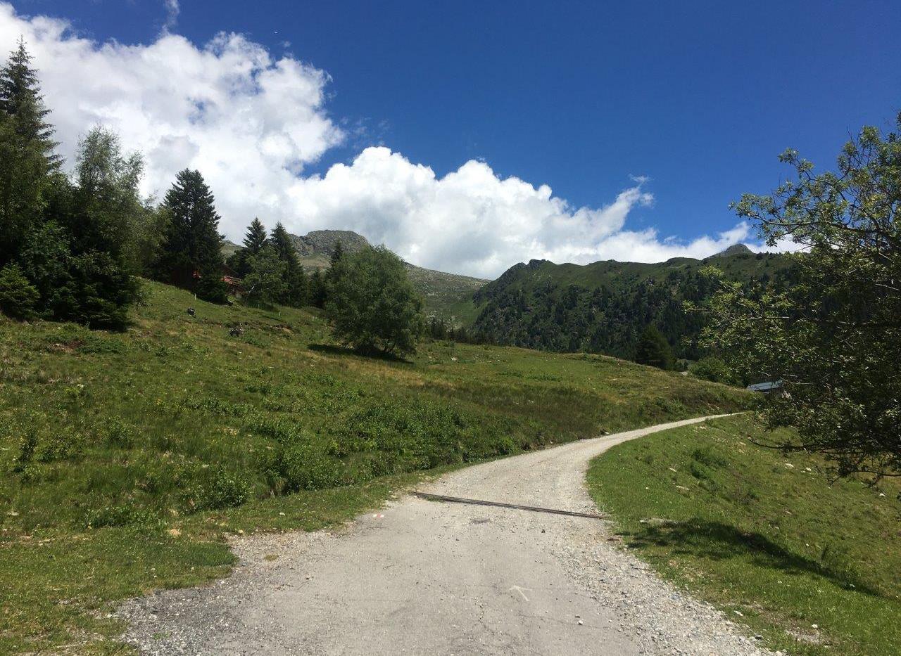 Weg auf di Alpe di Carì