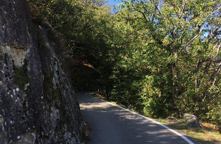 Höhenweg Richtung Golino