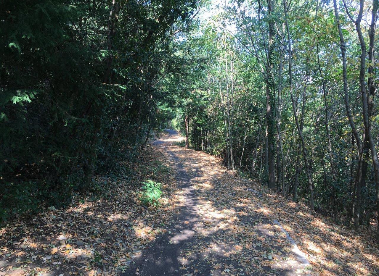 Weg Richtung Monte Verità