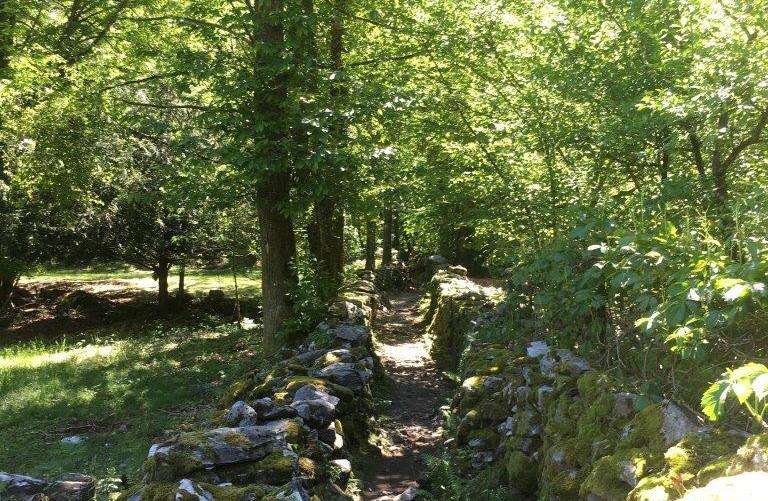 Weg Richtung Ponte Brolla