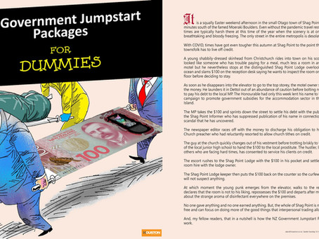 NZ Government Jumpstart Packages - For DUMMIES