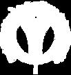 logo_redcolsi.png