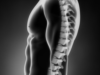 Finding Your Neutral Spine: How to Sit More Comfortably!