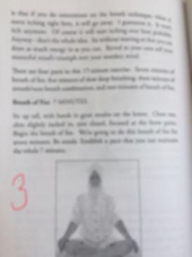 Pranic Body 3.jpg
