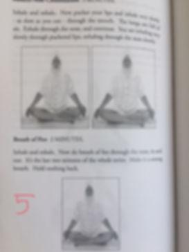 Pranic Body 5.jpg