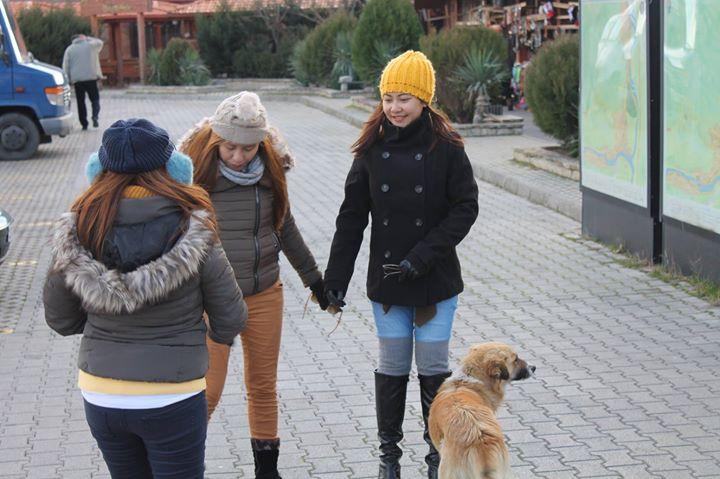 Exploring Georgia with Sisterlike