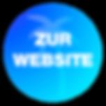 Zur Website.png