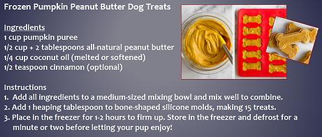 frozen pumpkin peanut butter dog treats.