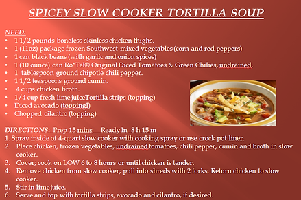 SPICEY SLOW COOKER TORTILLA SOUP RECIPE.