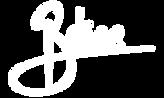 bdice logo final (1)_edited.png