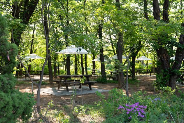벚나무 숲 BBQ 야외 테이블