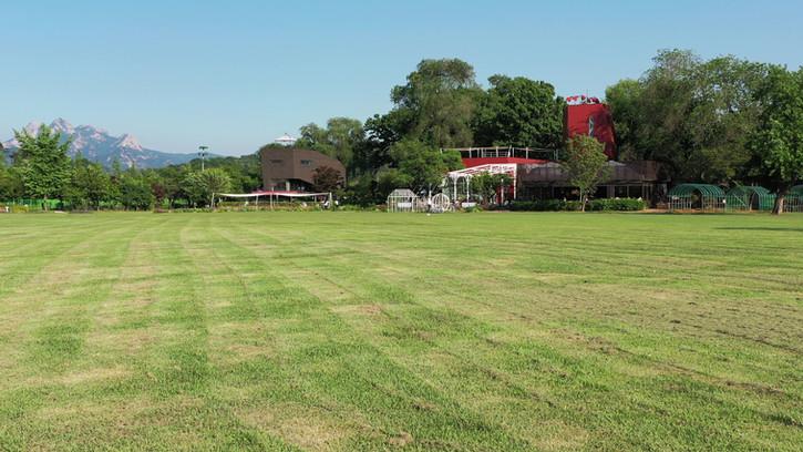 플랜테이션 잔디광장