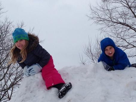Snow Day Dreams