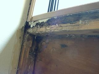 ドクター雨仕舞い 外壁開口部 雨漏り調査 サッシ下端
