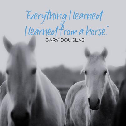 EVERYTHINGILEARNEDI LEARNED.png